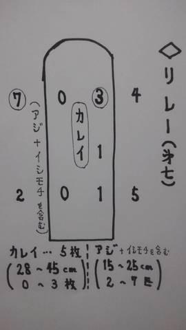 1551104905733.jpg