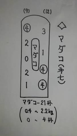 1577954566234.jpg