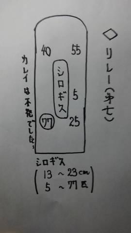 1580635714591.jpg